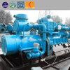 Le fumier de bovins Déchets agricoles Power Plant de biogaz Le biogaz générateur du moteur