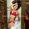 Biancheria intima Shop Product Advertizing Display per Wall Mounted Slim LED Light Box con Private Shop