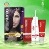 2014 Nouvelle formule Violet Focus Faits saillants de cheveux couleur des cheveux