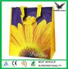Fabricants de sac tissés par pp de la Chine Changhaï