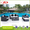 La mobilia del giardino, Recliner del rattan ha impostato (DH-835)