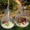 La fruta y la forma de dibujos animados Jarrón Glower bola de cristal y la botella para Microlandschaft