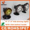 Lumière ronde de xénon CACHÉE par 55W des prix de couleur bon marché de noir pour outre de la route 4X4