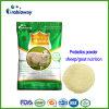 De Additieven van het Dierenvoer van de Gist van Probiotics van de Herkauwer van de Geit van de Schapen van het Ontwerp van de douane