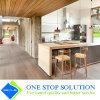 Land-Typ Küche-Schrank-modulare Möbel (ZY 1016)