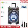 Fábrica de altavoz Feiyang---La Más Sexy orador F12-22