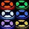 빨강 노랗고 또는 파랗고 또는 녹색 또는 백색 5050SMD LED 지구 빛