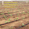 Plastic Product - de Plastic Band van de Druppelbevloeiing voor de Irrigatie van de Landbouw