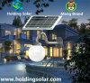 Lámpara solar verde de la energía LED con control ligero inteligente