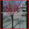 Arbre de Cherry Blossom en plastique pour les Illuminations de lumière