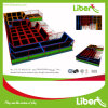 Liben New Design Trampoline for Park with Foam Pit