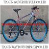 Tianjin 20  24  26  Mountain Bicycles/MTB Bicycles 21s