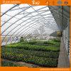 Maison verte solaire pour l'utilisation hivernale