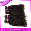 no cabelo Curly malaio da venda 3PCS, do cabelo não processado barato Curly Kinky malaio do Virgin do cabelo do Virgin de Grade8a Weave Curly brasileiro