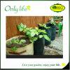 La mode Oxford d'Onlylife imperméable à l'eau élèvent le planteur de tissu