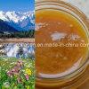 SpitzenHoney, 100%Natural Organic chinesisches Herbal Medicine Honey, Wild/Soil Honey, Ripe Honey, kein Antibiotics, kein Pesticides, kein Pathogenic Bacteria, Health Food