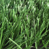 Calcio Synthetic Grass Nature Looks Turf con Soft Touch