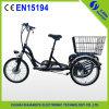 2015 nouveau Design 36V 10ah Lithium Battery Electric Tricycle