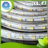 Luce di striscia ad alta tensione di SMD5050 LED 110V 220V