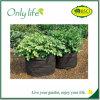 Flexible Umgebung Onlylife gebildet Wachstum-vom freundlichen Filz-Garten-Beutel
