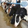 Contrôle de température sans fil de détecteur de température de management de santé de bétail pour la ferme avicole de bétail