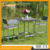 ホテルまたはホーム余暇表および椅子の現代アルミニウム棒一定の屋外の庭のテラスの家具