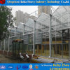 China-niedrige Kosten-vorfabrizierter Rahmen-Glasgewächshaus mit Wasserkultursystemen