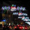 LED 거리 장식적인 가벼운 크리스마스 휴일 훈장