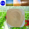 Amminoacido di verdure della polvere 52% dell'amminoacido di sorgente