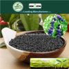 Il carbonio di Kingeta ha basato il fertilizzante composto NPK 8-6-18 per frutta