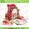 2 persona Picnic Bag para Family, Picnic Backpack (CA1428-1)