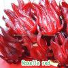 Roselle красного цвета