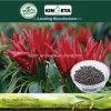 Il carbonio del fertilizzante di conservazione di acqua di Kingeta ha basato il fertilizzante composto NPK 22-7-11