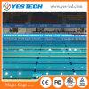 Schermo di perimetro LED di sport per il campione di nuoto