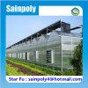 Estufa de venda do PC do tipo de Sainpoly a melhor para o vegetal