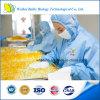 GMP/FDA에 의하여 증명되는 건강식 레시틴 Softgel
