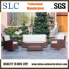 Le sofa extérieur a placé pour le jardin (SC-B1001)
