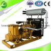 Gás natural Genset da mini potência com o certificado do CE e do ISO (20KW)