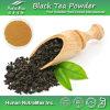 Extrait de thé noir (théaflavine 10%-40%, poudre instantanée de thé noir)