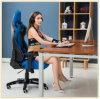 상업적인 가구 최고 중대한 도박 의자 Wcg 게임 사무실 의자