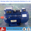 O elevador eléctrico trifásico de Frequência Variável (VVVF de Regulagem de Velocidade do Motor)