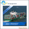 Internationales Logistics Ocean Service From China zu Worldwide