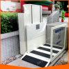 Elevación Handicapped lisiada vertical de la escalera del sillón de ruedas al aire libre