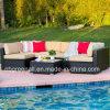 da mobília secional ao ar livre do pátio da forma de 7PCS U jogo de vime do sofá de Brown