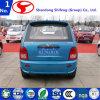 Qualité chinoise avec véhicule électrique de prix usine le mini/véhicule électrique/véhicule électrique/véhicule/mini véhicule/véhicule utilitaire/véhicules/véhicules électriques/mini véhicule électrique