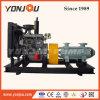Type D multicellulaires pompe centrifuge avec moteur diesel / Irrigation application