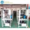 All'ingrosso nella desalificazione Palnt dell'acqua di mare della Cina