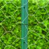 Het gegalvaniseerde Hexagonale Opleveren van de Draad van het Vee