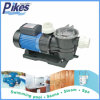 Pool, Pool Water Treatment Facilities를 위한 Efficient Pump 수영을%s 공장 High Pressure Plastic Circulate Pump