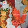 Tela teñida de los hilados de polyester del telar jacquar para la materia textil de la ropa (GLLML078)